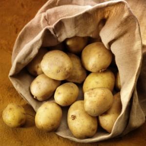 Kartoffel für Schnellkochtopf